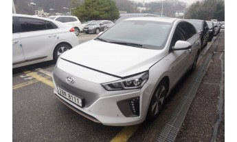 IONIQ electric 2017